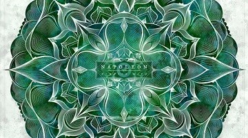 napoleon-newborn-mind-cover-tb