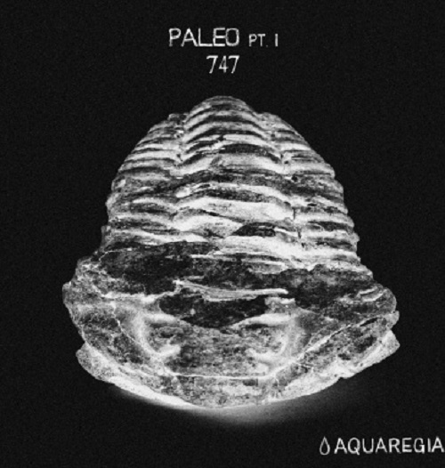 paleo-pt-1-album-art-final-final-web-100