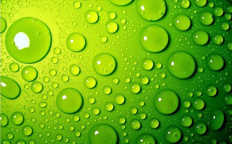 water-drops-on-green-surface-and-p-o-high-resolution2
